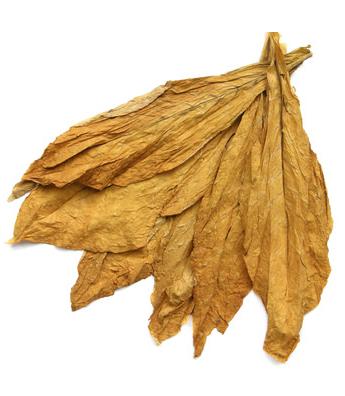 Inawera - Aroma Gold Ducat