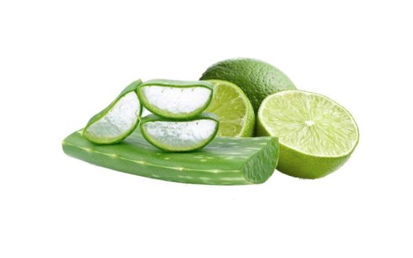 Inawera - Aroma Kaktus - Limette